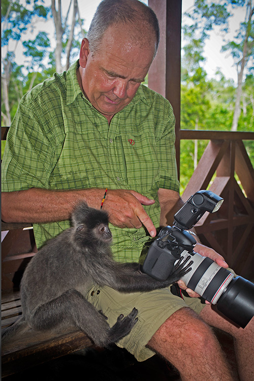 Grey leaf monkey checking out the pictures I took on its mates. I am the guy in the green shirt.
