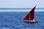 Maldive sailboat