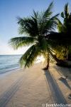 Maldivian uninhabited island