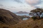 Komodo landscape